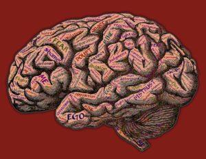 trastorno paranoide de la personalidad