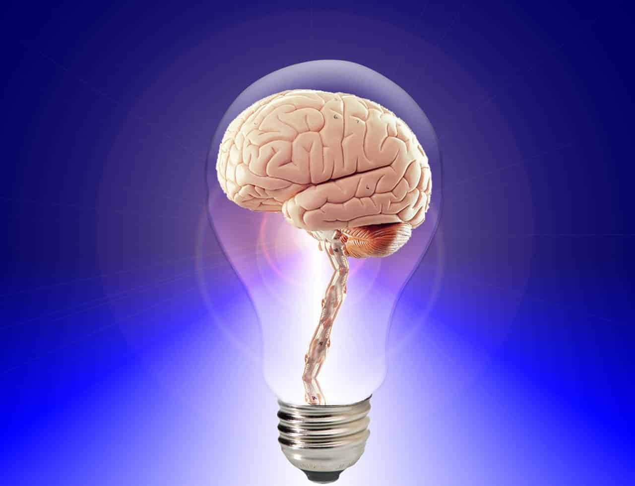 Modelos factoriales de inteligencia humana